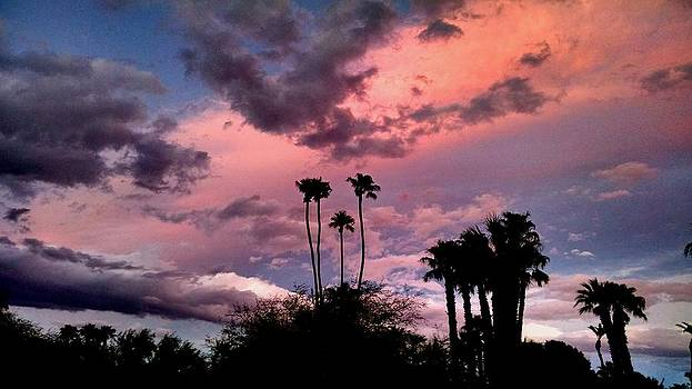 Cotton Candy Sunset by Chris Tarpening