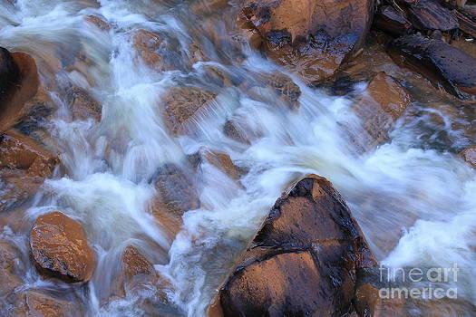 Cotton Water by Teresa Thomas