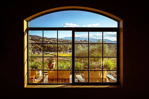 Cougar Winery View by Lauri Novak