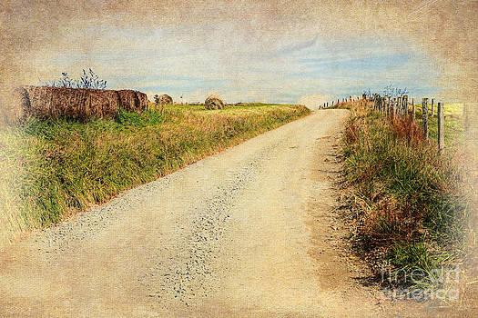 Dan Carmichael - Country Farm Road