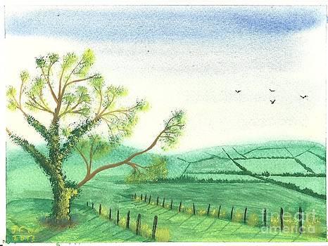 Country Lane by John Williams