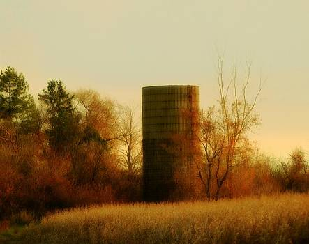 Gothicolors Donna Snyder - Country Morning
