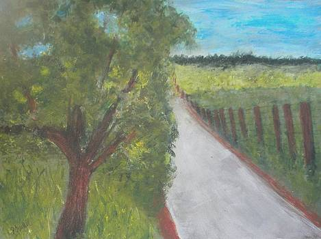 Country Road by Andrea Friedell