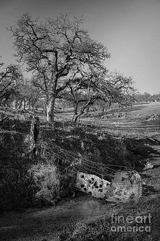 Country Road by Dan Julien