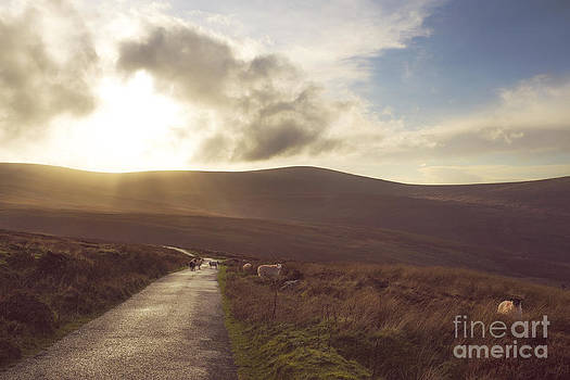 Country Road Dublin Mountains by Catherine MacBride