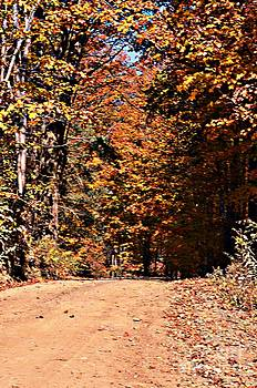 Country Road In Autumn by Kathleen Struckle