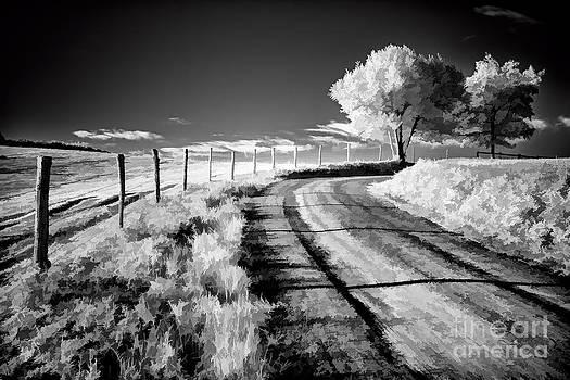 Dan Carmichael - Country Road in the Blue Ridge