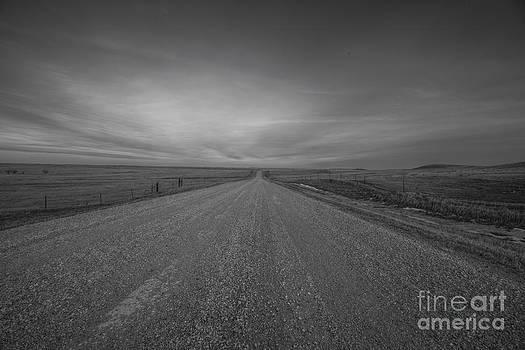 A Country Road of South Dakota by Steve Triplett