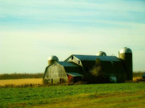 Gothicolors Donna Snyder - Country Scape