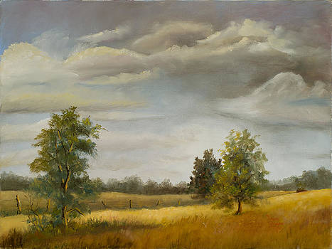 Country Scene by Diane Gowin