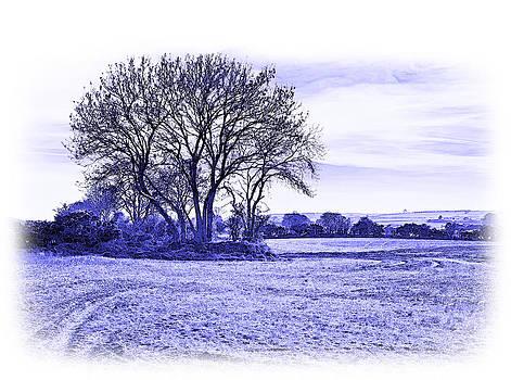 Jane McIlroy - Country Scene