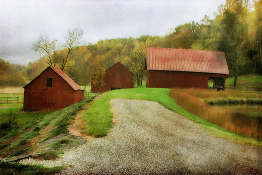Country Side by Joan Bertucci