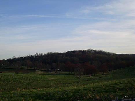 Country Skies  by Kiara Reynolds