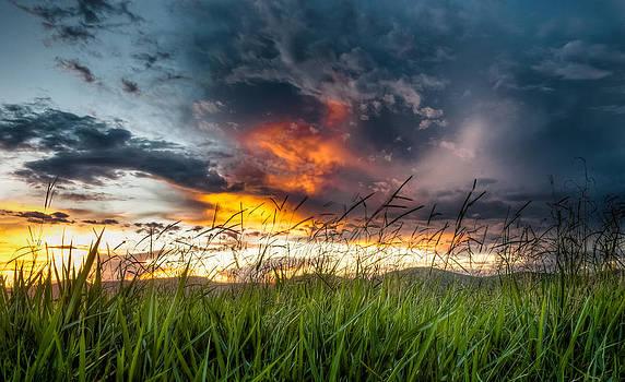Country Sunset in Valenca - Brazil by Igor Alecsander