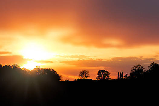 Country Sunset Silhouette by Amber Flowers