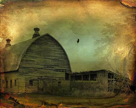Gothicolors Donna Snyder - Countryside
