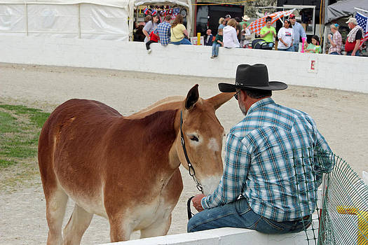 Cowboy And Friend by Brenda Donko