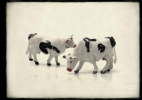 BERNARD JAUBERT - Cows figurines