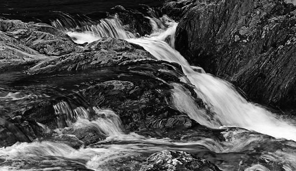 Cox Brook by Robert Mitchell
