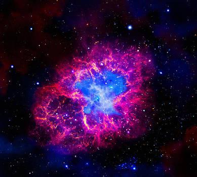 Dale Jackson - Crab Nebula