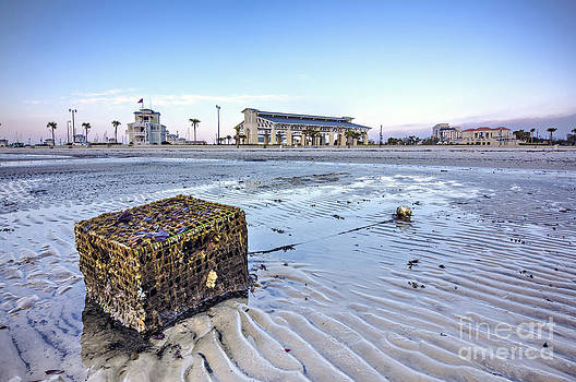 Crab Trap Washed Ashore by Joan McCool
