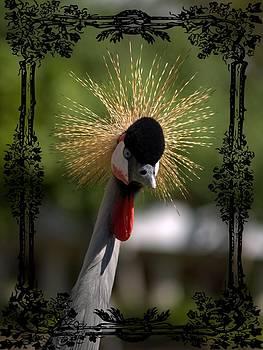 Crane by Athala Carole Bruckner