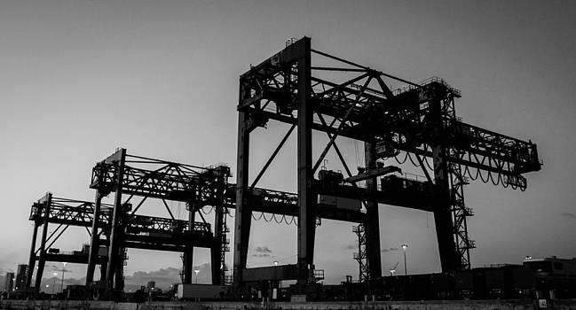 Cranes by Julian Sula