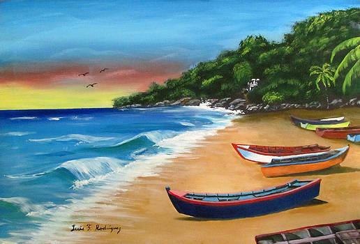 Crashboat Beach Wonder by Luis F Rodriguez