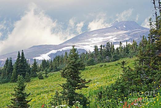 Stanza Widen - Crater Lake Trail