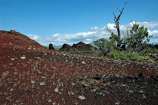 Craters of the Moon National Monument Colorful Landscape by Bruce Gourley