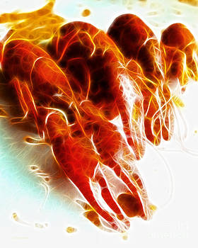 Wingsdomain Art and Photography - Crawdads - Electric