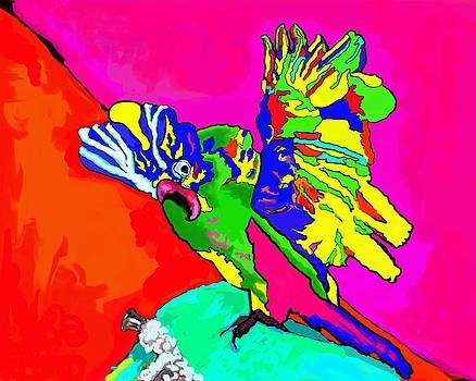 Crazy Bird by Pamela Shelton