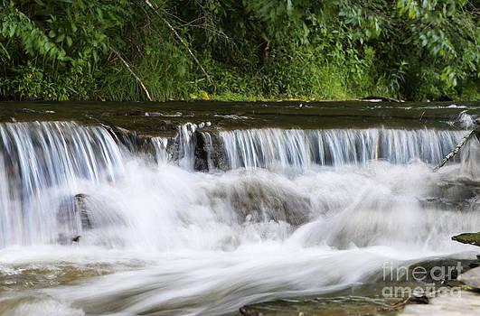 Creek Falls by Suzi Nelson