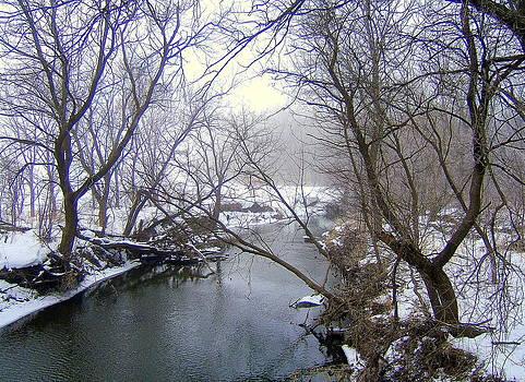 Creek II by Claude Oesterreicher