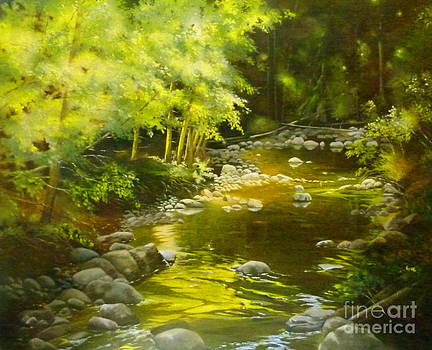 Creek Reflections by Linda Hunt