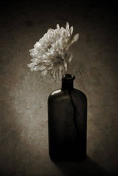 Cremon by Jim Larimer