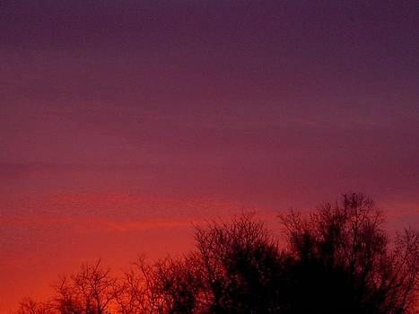 Crimson Sky by Lila Mattison