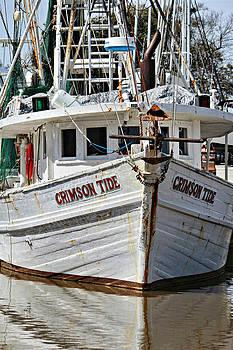 Crimson Tide at Fly Creek  Portrait by Lynn Jordan
