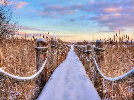 Crooked Lake Boardwalk by Jenny Ellen Photography