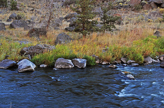 Crooked River Rocks and Water by Thomas J Rhodes
