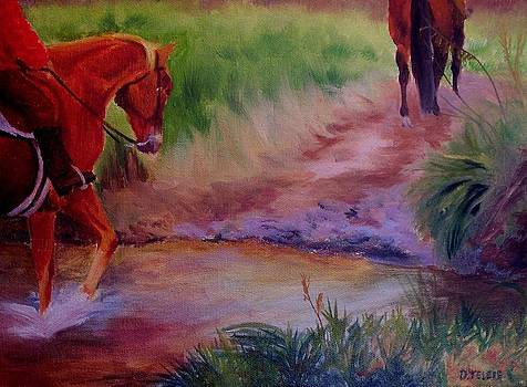 Crossing the Stream by Donna Teleis