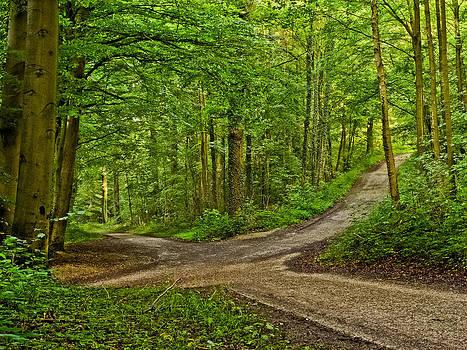 Crossroads after a night of rain by Martin Liebermann