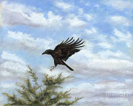Crow and Red Cedar  by Jymme Golden