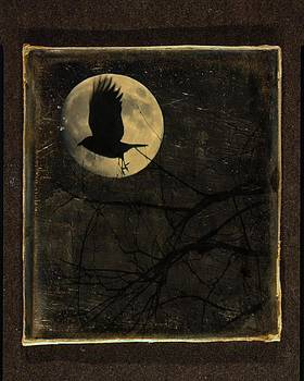 Gothicolors Donna Snyder - Crow And The Moon