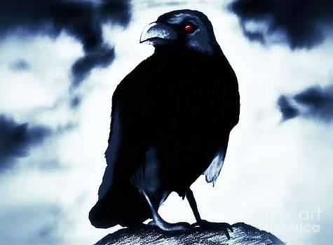 Crow by Shane B
