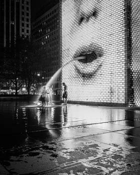 Crown Fountain at Night by Lauri Novak