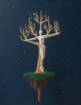 Crucifix 2 by Steve  Hester