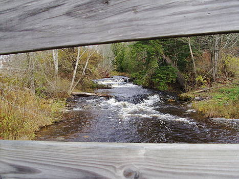 Crum Creek by Daniel Weaver