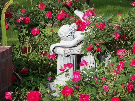 Crying Angel by Dana Doyle