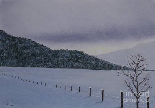 Stanza Widen - Crystal Chill